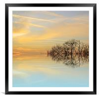 Heavenly branches, Framed Mounted Print