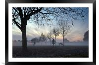Misty afternoon in the park, Framed Mounted Print