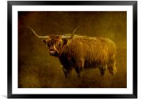 Highlander, Framed Mounted Print