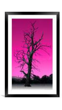 Old Tree, Framed Mounted Print