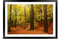 songs from the wood, Framed Mounted Print
