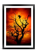 The Raven, Framed Mounted Print