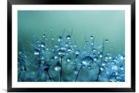 Blue Shower, Framed Mounted Print