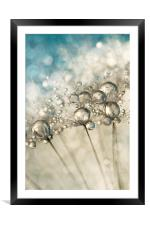 Sapphire & Silver Sparkle, Framed Mounted Print