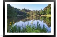Reflections at Mallards Pike, Framed Mounted Print