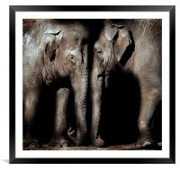Friends of old, Framed Mounted Print
