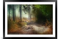 THE PATH, Framed Mounted Print