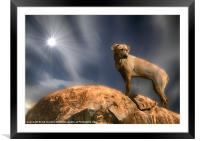 THE LION HOUND, Framed Mounted Print