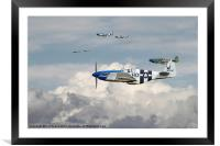 P51 Mustang - 352nd Blue Noses, Framed Mounted Print