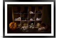 Halloween Collection, Framed Mounted Print