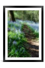 Bluebell Rise, Framed Mounted Print