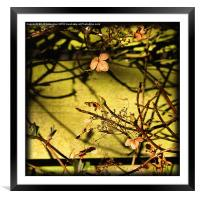 By The Fence, Framed Mounted Print