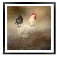 King of the Coop, Framed Mounted Print