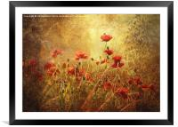 Golden Dawn, Framed Mounted Print