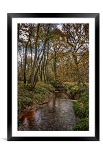 River Medway In The Woods, Framed Mounted Print