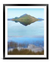 Melaleuca Dreaming, Framed Mounted Print