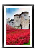 Tower of London poppies Blood Swept Lands, Framed Mounted Print