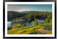 Tarn Hows, Framed Mounted Print