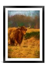 Highland cow with painterly effect, Framed Mounted Print