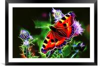 Electric Peacock Butterfly, Framed Mounted Print