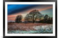 A frosty morning in Norfolk, Framed Mounted Print