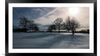 Winter Shadow, Framed Mounted Print