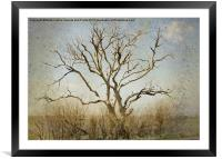 Lonely, Framed Mounted Print