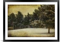 Snow Kissed, Framed Mounted Print