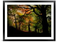 IN THE WOODS, Framed Mounted Print