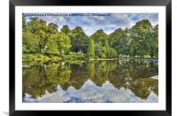 Reflections on a Summer Day, Framed Mounted Print