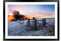 Winter Sunrise, Framed Mounted Print