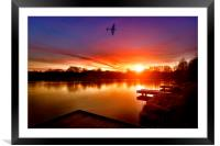 Early Bird, Framed Mounted Print