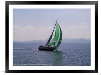 Racing Yacht, Framed Mounted Print