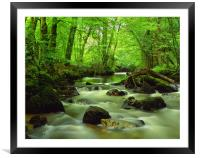 River Yealm at Yealmpton, Framed Mounted Print