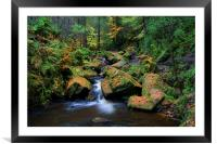 Wyming Brook with Autumn Colours, Framed Mounted Print