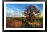 Pathway to Penny Hill, Framed Mounted Print