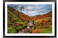 Fair Brook in Autumn, Framed Mounted Print