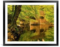 River Plym at Plymbridge, Framed Mounted Print