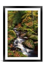 Padley Gorge Autumn Colours 2 , Framed Mounted Print