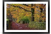 Bamford Path in Autumn , Framed Mounted Print