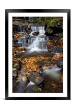 Lumsdale Waterfalls with Autumn Leaves , Framed Mounted Print