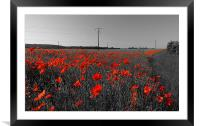 Train of Poppies , Framed Mounted Print