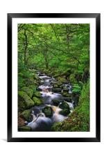 Looking Down Padley Gorge, Framed Mounted Print