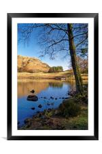 The Banks of Blea Tarn                      , Framed Mounted Print