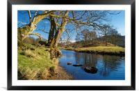 Banks of the River Brathay                      , Framed Mounted Print