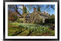 Sycamore Cottage, Dore                            , Framed Mounted Print