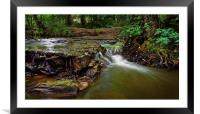 Waterfall on The Moss                             , Framed Mounted Print