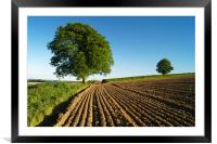 Plough Lines,Chard,Somerset                      , Framed Mounted Print
