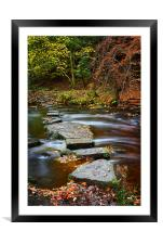 Rivelin Stepping Stones                           , Framed Mounted Print