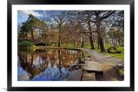 Longshaw Pond                               , Framed Mounted Print